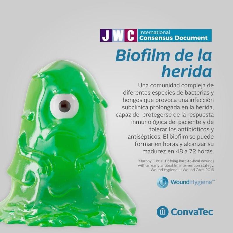 Una estrategia de intervención temprana contra el biofilm en las heridas de difícil cicatrización es la: Higiene de la Herida.